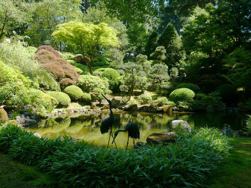حدائق بورتلاند  اليابانية E8de5c80ca9c2ff1